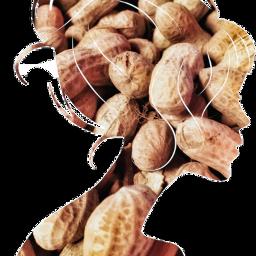 freetoedit scpeanuts peanuts