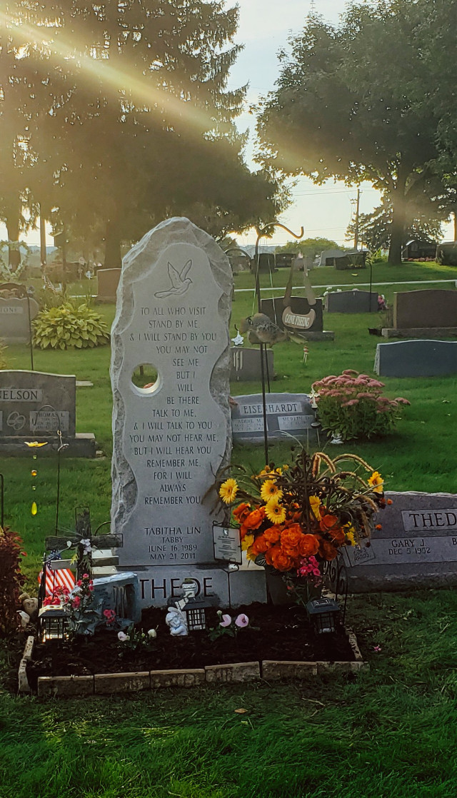 #cemetery #riptabby