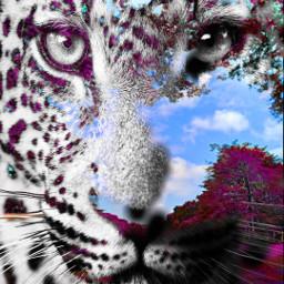 freetoedit lion king lionelferro