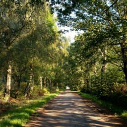 freetoedit way onmyway walk walking