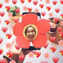 freetoedit jhooooooope funnyfaces btsmemes flowers ircscreenremix screenremix