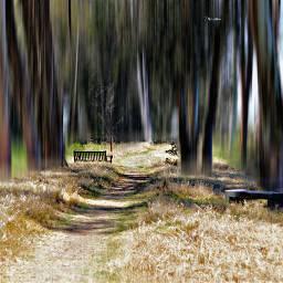 ghostfollowers dontfollowme nature natural trail freetoedit