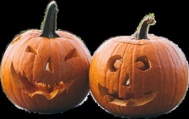 halloween pumkins autumn freetoedit scorange