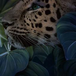 freetoedit madewithpicsart picsarteffects leon leopard