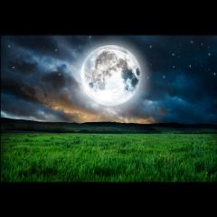 ftestickers landscape scenery meadow nighttime freetoedit