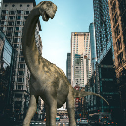 freetoedit challenge animal dino dinosaur ecgiantanimals