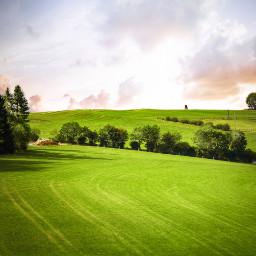 freetoedit nature green photography sky