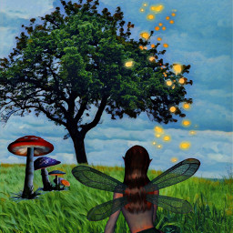 freetoedit fairy fantasy fireflies wings