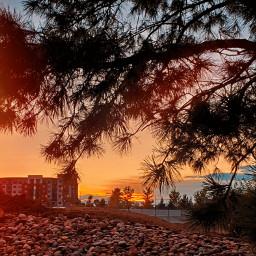 freetoedit sunset sun skyandclouds nature