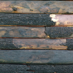 freetoedit remixit madera vintage caba day