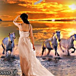 freetoedit myedit sunset beauty horses