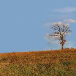 freetoedit pcminimalism myphotography nature landscape