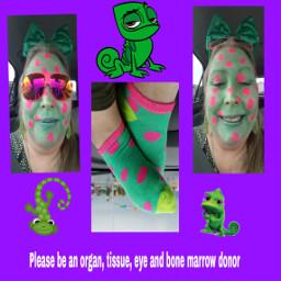 freetoedit socks polkadots dialysissocks pleasebeanorgantissueeyeandbonemarrowdonor