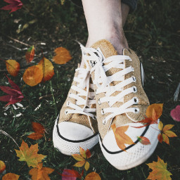 freetoedit fallleavesbrush fallleaves shoes autumn