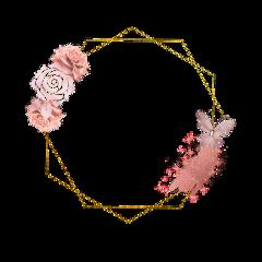 frame rosegold freetoedit