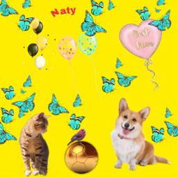 freetoedit myedit butterfly cat dog