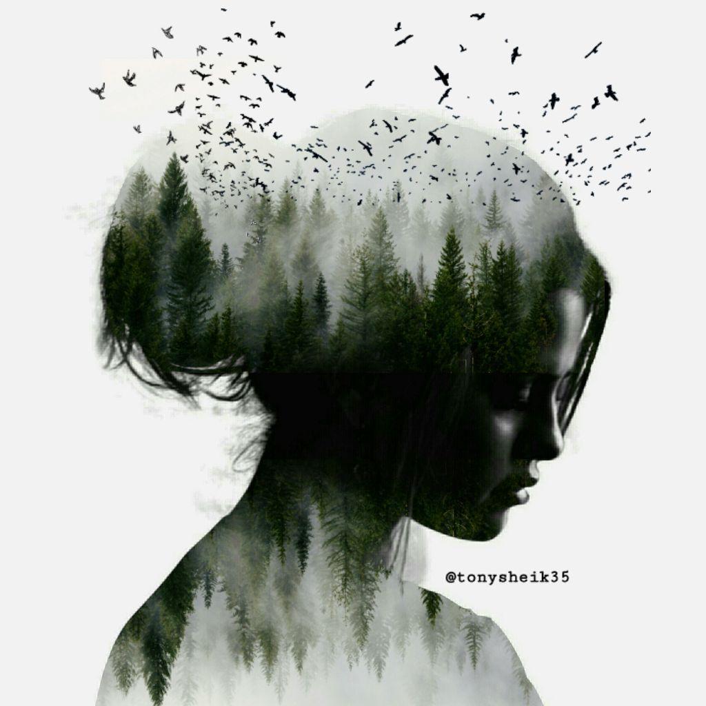 #freetoedit #editedwithpicsart #doublexposure #dobleexposición #forestpark #silohuettes #remixdailychallenge #remixdaily #remixgallery #gallery #selenagomez