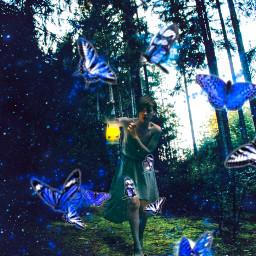 butterflyeffect butterflies woman forest fantasy freetoedit