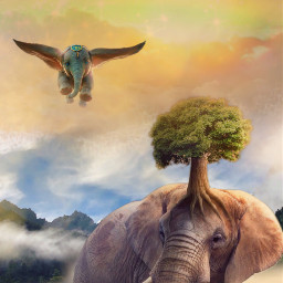 freetoedit fantasyart fairytalebackground clouds dumbo