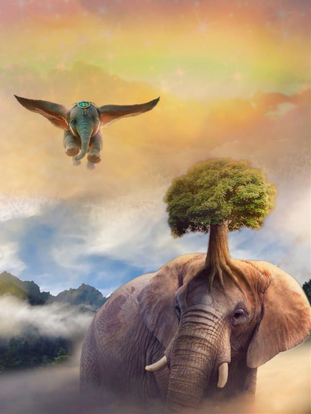 #freetoedit #fantasyart #fairytalebackground #clouds #dumbo #elephant #tree #surreal #surreality #stickers #blending #hdr1 #kpp2 #editstepbystep #layersonlayers #myedit #madewithpicsart