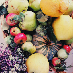 freetoedit fruits multicolor stilllife nature