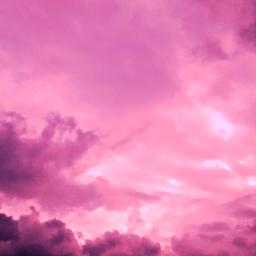 freetoedit pink pinky pinkyou animaleye