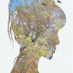 freetoedit woman doubleexposurecontest tree dreams