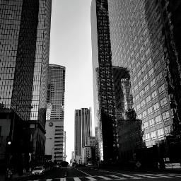 freetoedit city urban losangeles tallbuildings pcblacknwhite