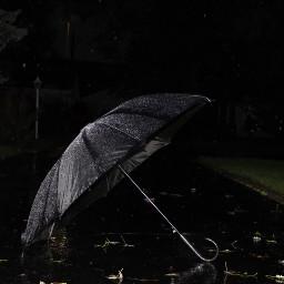 freetoedit rainynight blackumbrella autumn autumnfeels