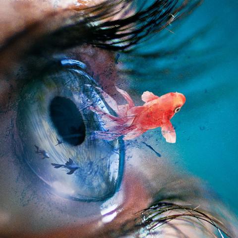 #freetoedit,#srcunderwater,#underwater