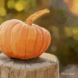 mydrawing digitaldrawing digitalpainting pumpkin fall dcmyfavfruit
