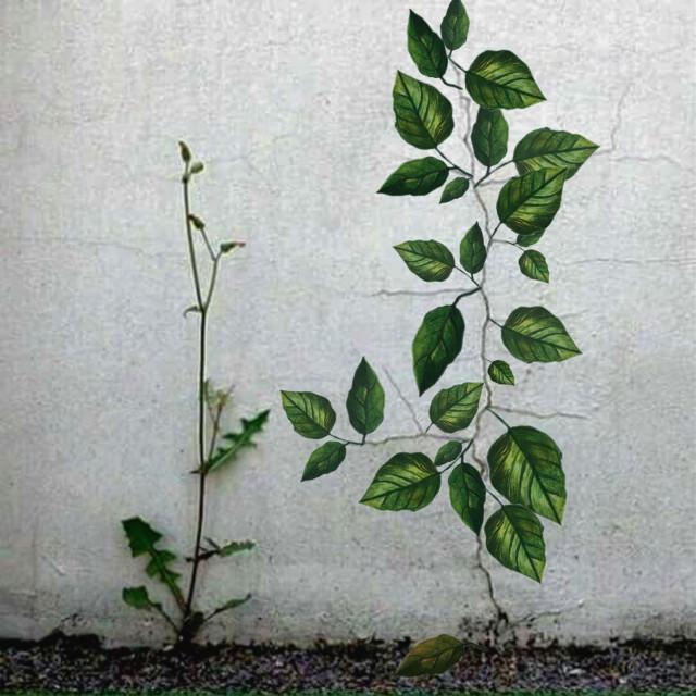 #freetoedit #plant #grow #imagine #environment #leaf #leaves #stick #green #greenwood