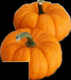 oktober🍃☕🍁🌌🍂 freetoedit october oktober