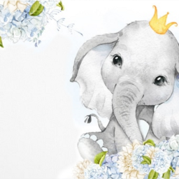 card invitation baby elephant blue freetoedit