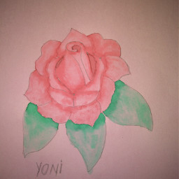 freetoedit myhoby paint roose painting