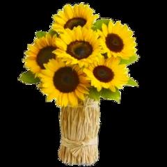 sunflower rose flower stickers @jennys_haghira freetoedit