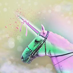 freetoedit vipshoutout fantasy unicorn animal