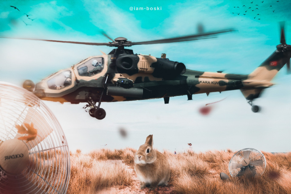 """""""What's happening?""""  """"Arey... @iam-boski decided to go crazy again.. So""""  Rabbit: ohhhh now it makes sense why nothing in this edit makes sense *hops away*    Image source: Unsplash (under """"fields"""")  Birds sticker: Picsart gold    #freetoedit #editedwithpicsart #editedbyme #rabbit #helicopter"""