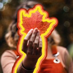 freetoedit autumn leaves leavesfall fall