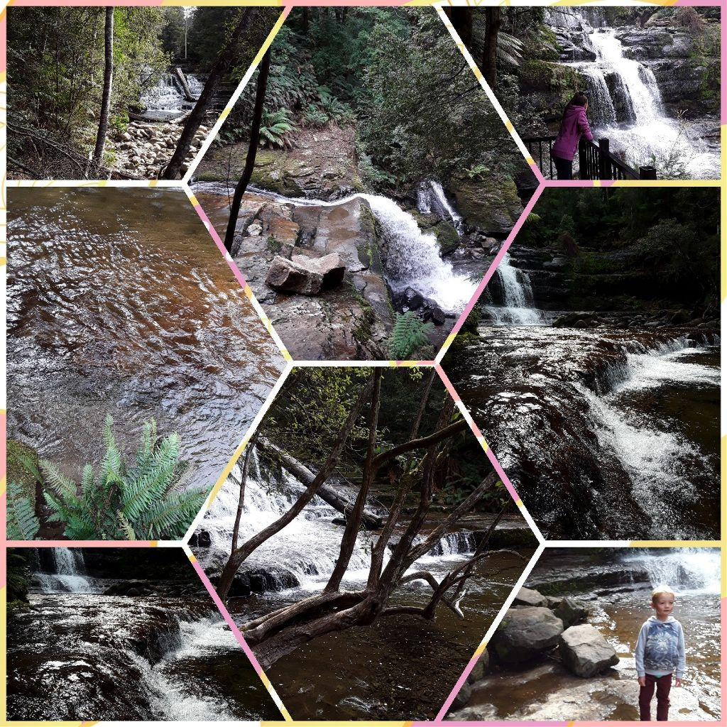 #tasmania #australia #waterfall