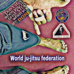 muaythai judo jiu-jitsu sport wjjf