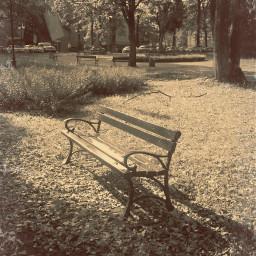naturephotography citypark bench autumnvibes october2019
