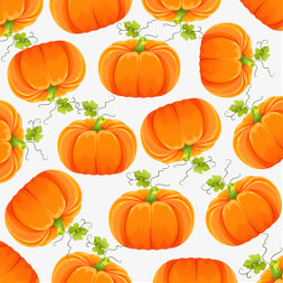 pumpkin background remixit freetoedit remix