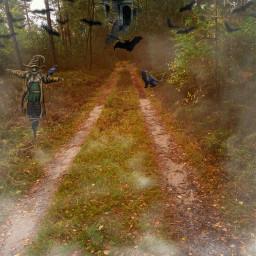 freetoedit haunted house bats blackcat scarecrow