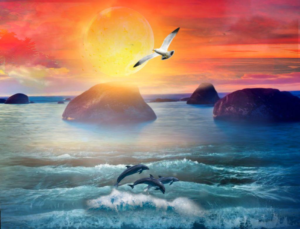 #freetoedit #nature #landscape #ocean #sea #dolphins #sunset #skylovers #skyporn #naturesbeauty #aestheticedit #beautiful #creative #colorful #colorlove #stickers #picsarteffects #myedit #madewithpicsart