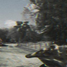 freetoedit zombie pi31dayofhalloween