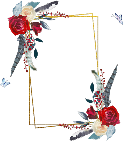 freetoedit rose square feather floral