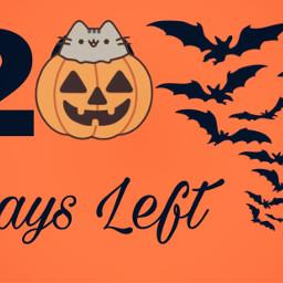 halloween2019 halloween bats pumpkin autum freetoedit