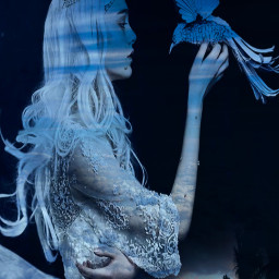 freetoedit female princess bird moonlight myeditoffreetoedit