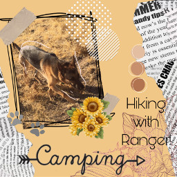 camping desert hiking gsd gsdlove freetoedit
